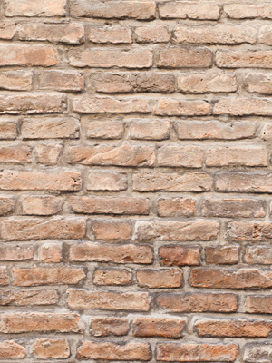 Wall Mural Bricks
